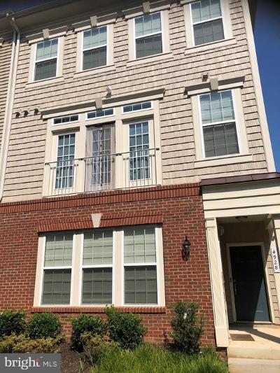 Woodbridge VA Condo Active Under Contract: $299,000