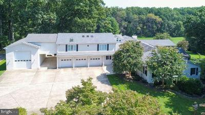 Bristow, Gainesville, Haymarket, Woodbridge, Occoquan, Manassas, Nokesville Single Family Home For Sale: 3815 Delashmutt Drive