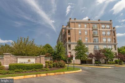 Woodbridge Condo For Sale: 810 Belmont Bay Drive #405