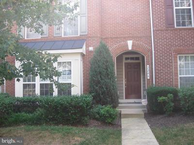 Woodbridge Condo For Sale: 2244 Margraf Circle #413