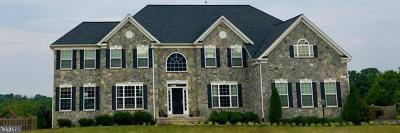 Gainesville, Haymarket Rental For Rent: 15301 Mountain Crest Court