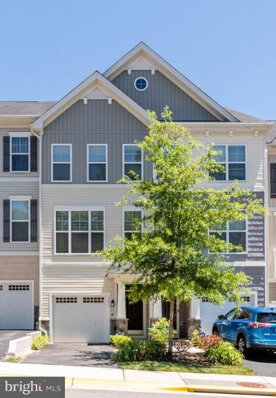 Prince William County Condo For Sale: 12803 Lotte Drive #4