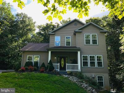 Manassas Single Family Home For Sale: 5670 Davis Ford Road