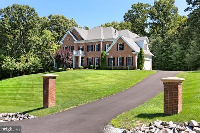 Woodbridge Single Family Home For Sale: 4349 Windermere View Place