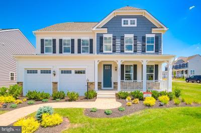 Manassas Single Family Home For Sale: Grant Avenue