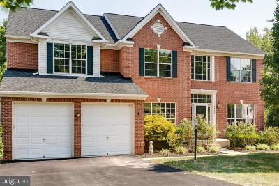 Manassas Single Family Home For Sale: 8453 Summer Breeze Place