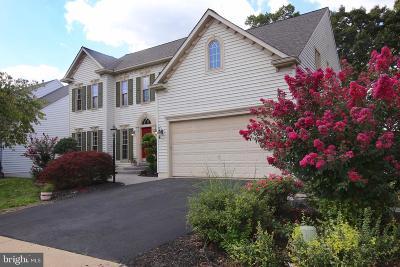 Gainesville, Haymarket Single Family Home For Sale: 8176 Tillinghast Lane