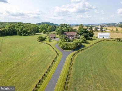 Rockingham Single Family Home For Sale: 2989 Mount Clinton Pike