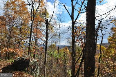 Rappahannock County Residential Lots & Land For Sale: 60 Rattlesnake Hollow