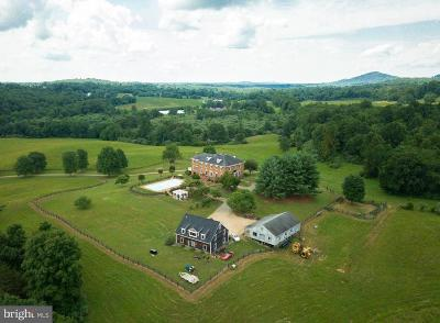Rappahannock County Single Family Home For Sale: 223 S Poes Road