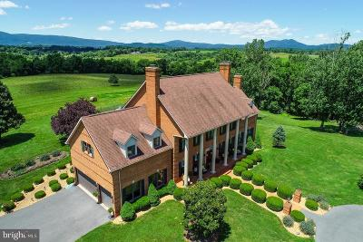 Rappahannock County Single Family Home For Sale: 345 Grimsley Road