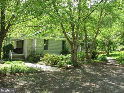 Rappahannock County Single Family Home For Sale: 41 Sycamore Ridge Road