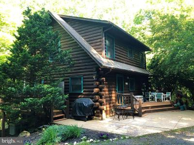 Rappahannock County Single Family Home For Sale: 47 Gore Road