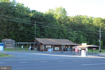 Commercial For Sale: 17267 Lee Highway