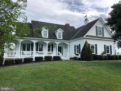 Rappahannock County Single Family Home Under Contract: 37 Ladybrook Lane