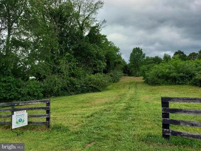 Rappahannock County Residential Lots & Land For Sale: Liscarne Lane
