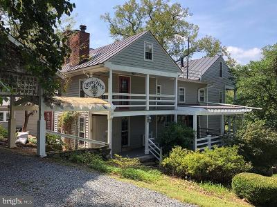 Rappahannock County Single Family Home For Sale: 3131 Slate Mills Road