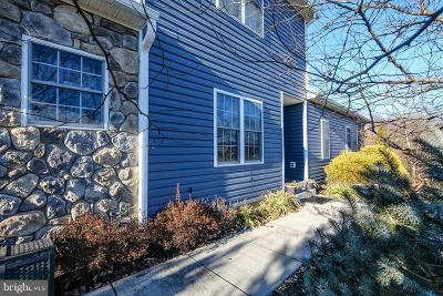 Woodstock Townhouse For Sale: 272 Parkside Court