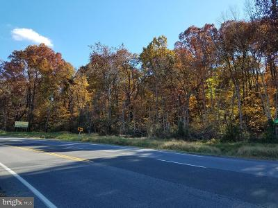 Residential Lots & Land For Sale: East Lee Hwy (Rt 211)