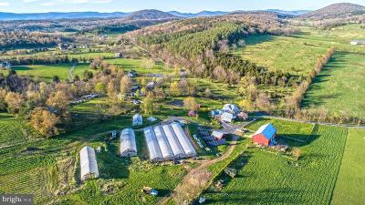 Farm For Sale: 1167 Crooked Run Road