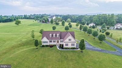 Shenandoah County Single Family Home For Sale: 889 Lantz Road