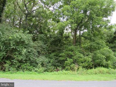 Residential Lots & Land For Sale: Kings Lane