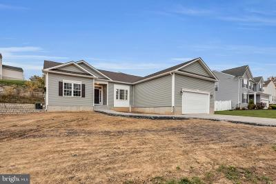 Shenandoah County Single Family Home For Sale: 122 Brill Drive