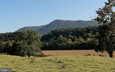 Clarke County, Harrisonburg City, Page County, Rockingham County, Shenandoah County, Warren County, Winchester City Residential Lots & Land For Sale: Island Farm Rd