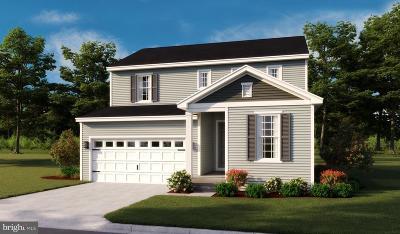 Strasburg Single Family Home For Sale: Cedar Springs Dr- Citrine