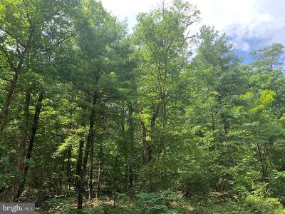 Residential Lots & Land For Sale: Lot 10 Crooked Run Road