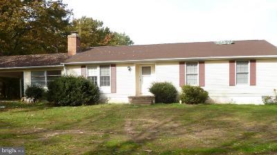 Spotsylvania Single Family Home For Sale: 7732 Stubbs Bridge Road