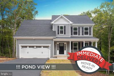 Single Family Home For Sale: 12913 Plantation Drive