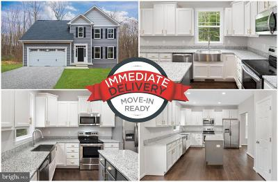 Single Family Home For Sale: 10911 Thiel Court