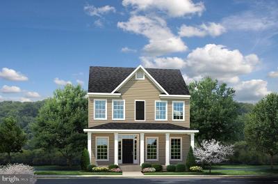 Spotsylvania Single Family Home For Sale: 1110 Shelton Lane