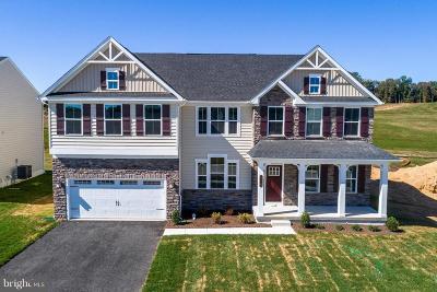 Fredericksburg Single Family Home For Sale: 1114 Hermitage Drive