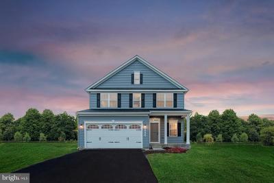 Spotsylvania County Single Family Home For Sale: 1110 Holley Oak Lane
