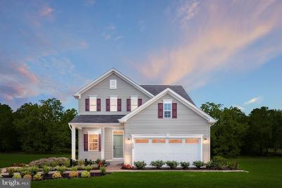Spotsylvania County Single Family Home For Sale: 1111 Holley Oak Lane