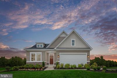 Spotsylvania County Single Family Home For Sale: 1113 Holley Oak Lane