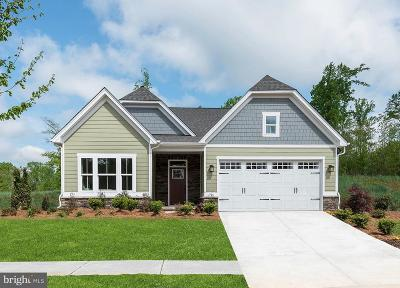 Spotsylvania County Single Family Home For Sale: 1114 Holley Oak Lane