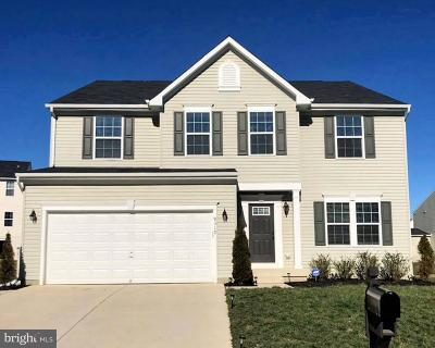 Spotsylvania County Single Family Home For Sale: 9317 Blue Pine Lane
