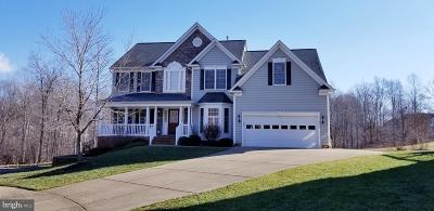 Spotsylvania Single Family Home For Sale: 10417 Silver Creek Court