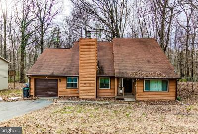 Fredericksburg Single Family Home For Sale: 11820 Rutherford Drive