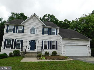 Spotsylvania Single Family Home For Sale: 6118 Salisbury Drive