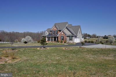 Spotsylvania Single Family Home For Sale: 9910 Agnes Lane