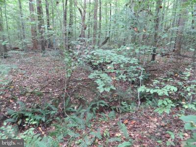 Spotsylvania Residential Lots & Land For Sale: 8702 Millwood Drive