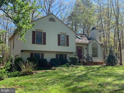Spotsylvania Single Family Home For Sale: 11701 Wilderness Park Drive