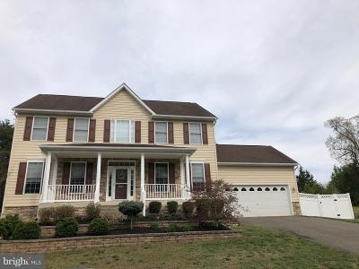 Spotsylvania County Single Family Home For Sale: 9913 Holland Meadows Court