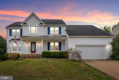 Fredericksburg Single Family Home For Sale: 11513 River Meadows Way