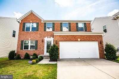 Fredericksburg Single Family Home For Sale: 9606 Hazelbrook Court