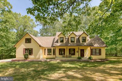 Fredericksburg Single Family Home For Sale: 12801 Gobbler Court